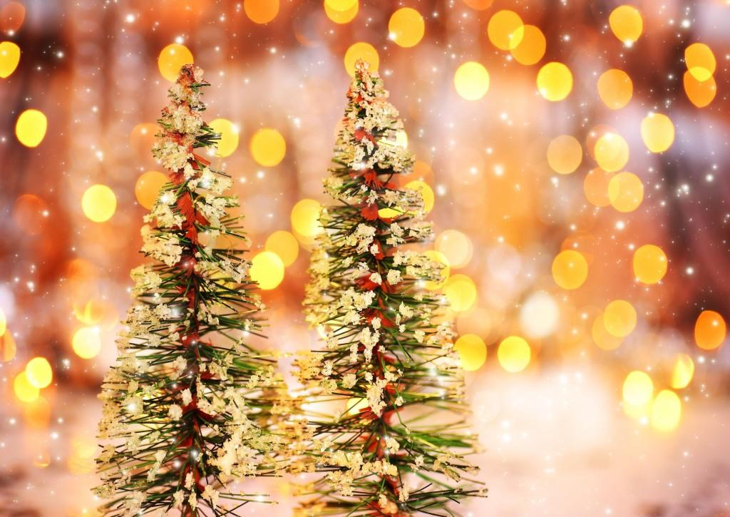 Kerstmis PNES